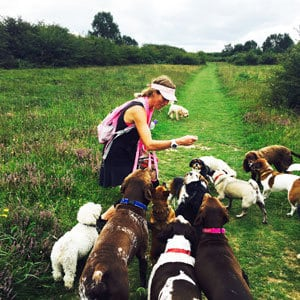 dog walking mersham dogs and kirsty