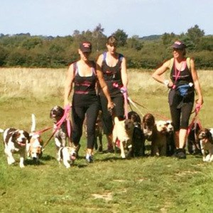 dog_walking_merstham_2