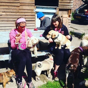 doggy_daycare_redhill_2